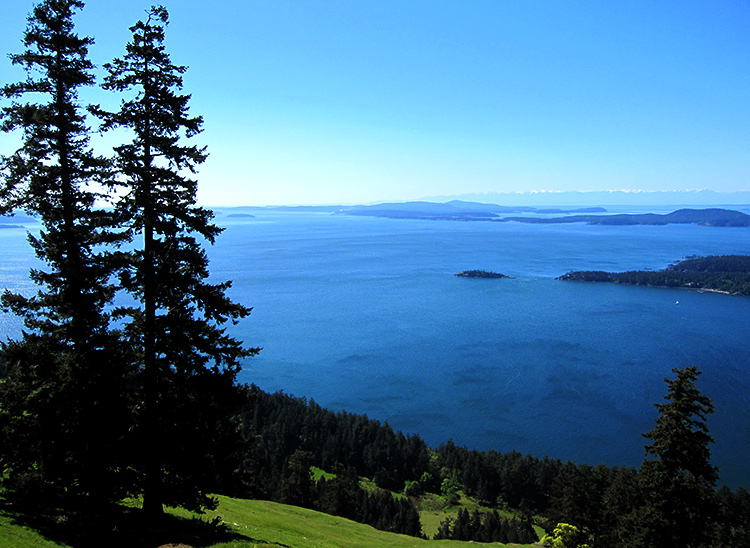 Saturna Island, Gulf Islands, British Columbia (Photo by Liesel Knaack) This work is licensed under a Creative Commons Attribution 4.0 International License.